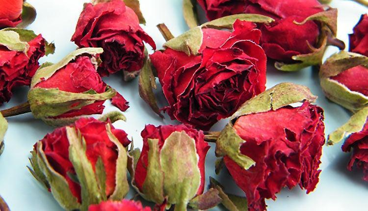 روش های خشک کردن گل رز با تمام فوت و فن ها