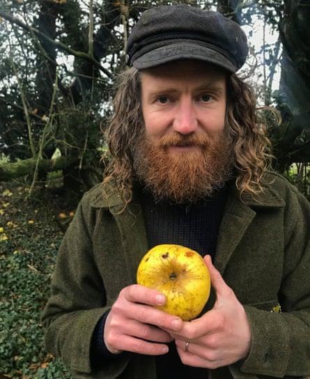 کشف گونه جدید سیب در اروپا