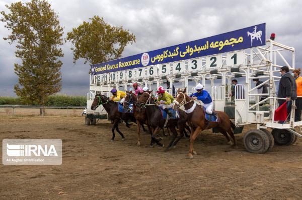خبرنگاران روز نخست هفته هفدهم مسابقات اسبدوانی گنبدکاووس برگزار گردید
