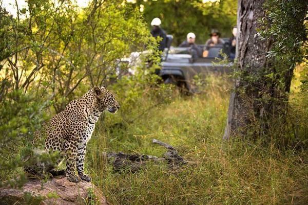 12 جاذبه برتر آفریقای جنوبی